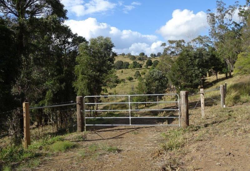 Undulating & Elevated Grazing Land